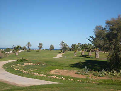 palm links golf course