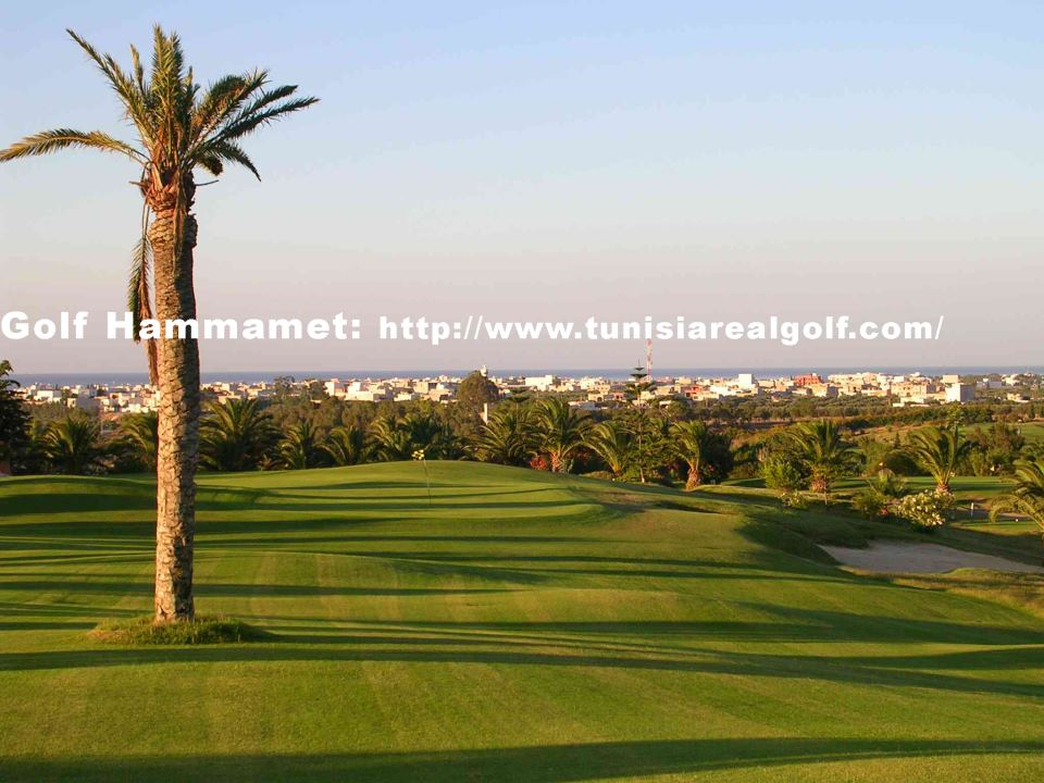 real golf travel hammamet